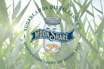 Permalink to Announcing the 2016 Top 12 MoonShare Grant Recipients
